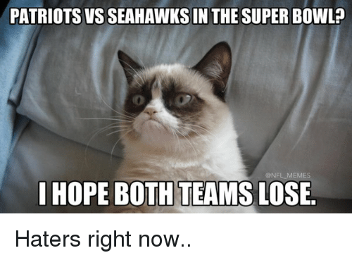 I Hope Both Teams Lose: PATRIOTS VS SEAHAWKS IN THE SUPER BOWL  @NFL MEMES  I HOPE BOTH TEAMS LOSE. Haters right now..