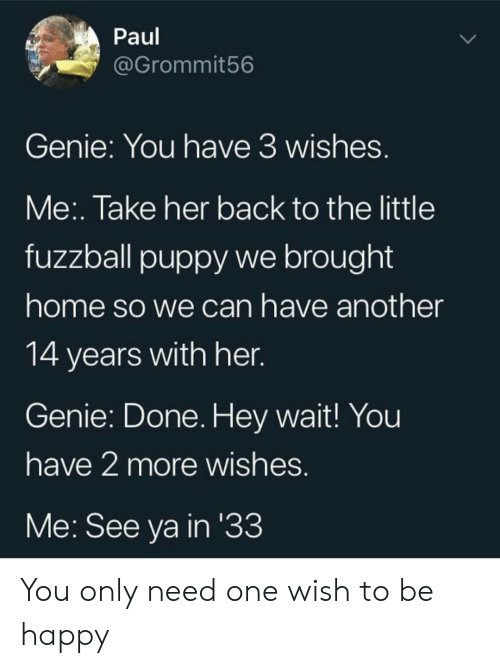 Have Another: Paul  @Grommit56  Genie: You have 3 wishes.  Me:. Take her back to the little  fuzzball puppy we brought  home so we can have another  14 years with her.  Genie: Done. Hey wait! You  have 2 more wishes.  Me: See ya in '33 You only need one wish to be happy