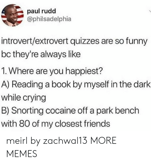 Snorting: paul rudd  @philsadelphia  introvert/extrovert quizzes are so funny  bc they're always like  1. Where are you happiest?  A) Reading a book by myself in the dark  while crying  B) Snorting cocaine off a park bench  with 80 of my closest friends meirl by zachwal13 MORE MEMES