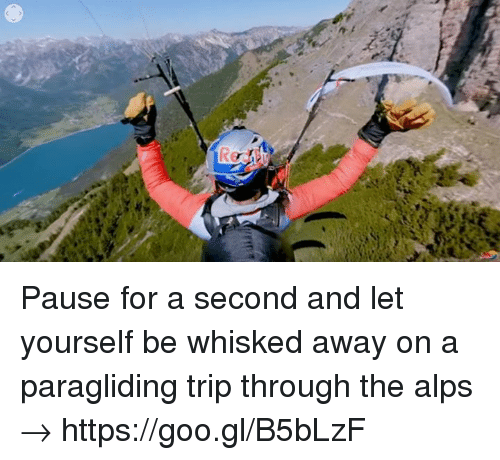 Dank, 🤖, and Alps: Pause for a second and let yourself be whisked away on a paragliding trip through the alps → https://goo.gl/B5bLzF