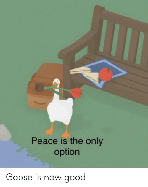 option: Peace is the only  option Goose is now good