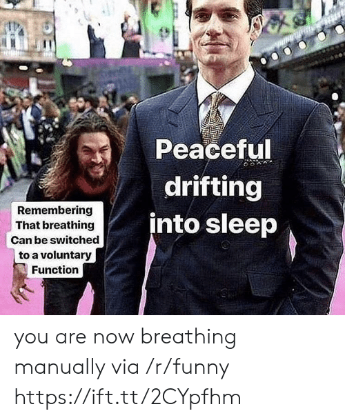 Funny, Sleep, and Can: Peaceful  drifting  into sleep  Remembering  That breathing  Can be switched  to a voluntary  Function you are now breathing manually via /r/funny https://ift.tt/2CYpfhm