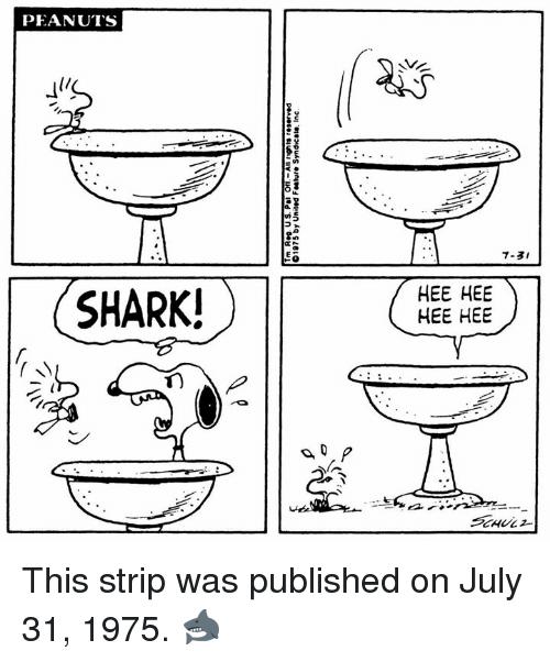 July 31: PEANUTS  7-3I  SHARK!  HEE HEE  HEE HEE This strip was published on July 31, 1975. 🦈