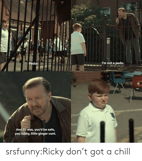 Chill, Tumblr, and Blog: Pedo!  m not a pedo.  And if I was, you'd be safe,  you tubby,little ginger cunt. srsfunny:Ricky don't got a chill