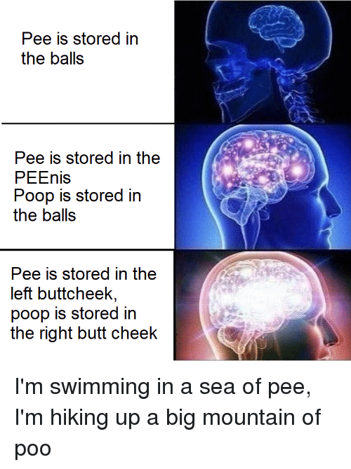 Butt, Poop, and Dank Memes: Pee is stored in  the balls  Pee is stored in the  PEEnis  Poop is stored in  the balls  e is stored in the  eft buttcheek,  poop is stored in  the right butt cheelk  fr YI