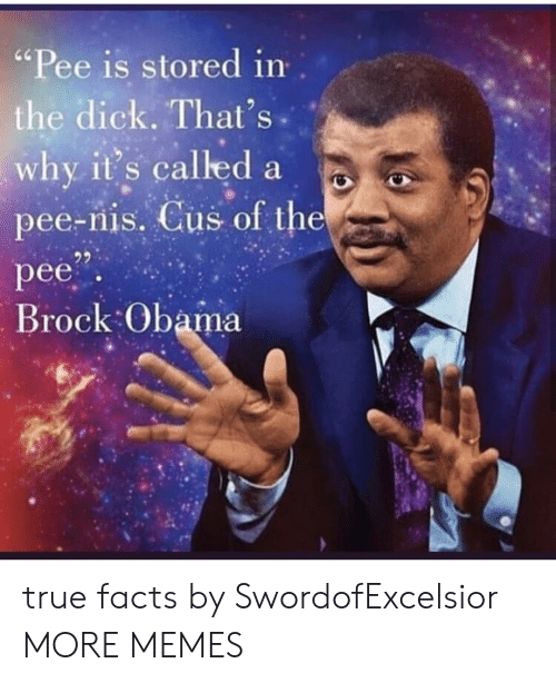 "Dank, Facts, and Memes: ""Pee is stored in  the dick. That's  why it's called a  pee-nis. Cus of the  pee  Brock Obama true facts by SwordofExcelsior MORE MEMES"