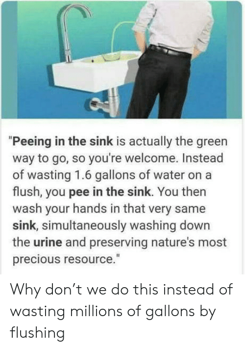 "Precious: ""Peeing in the sink is actually the green  way to go, so you're welcome. Instead  of wasting 1.6 gallons of wate  flush, you pee in the sink. You then  wash your hands in that very same  sink, simultaneously washing down  the urine and preserving nature's most  precious resource."" Why don't we do this instead of wasting millions of gallons by flushing"