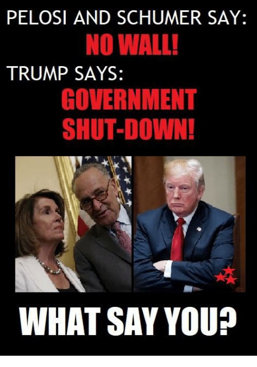 Memes, Trump, and Government: PELOSI AND SCHUMER SAY:  NO WALL!  TRUMP SAYS:  GOVERNMENT  SHUT-DOWN!  ra  WHAT SAY YOU?