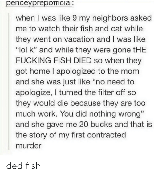 """On Vacation: penceyprepOTTICiai:  when I was like 9 my neighbors asked  me to watch their fish and cat while  they went on vacation and I was like  """"lol k"""" and while they were gone tHE  FUCKING FISH DIED so when they  got home I apologized to the mom  and she was just like """"no need to  apologize, I turned the filter off so  they would die because they are too  much work. You did nothing wrong""""  and she gave me 20 bucks and that is  the story of my first contracted  murder ded fish"""