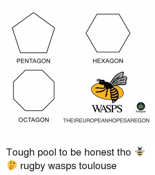 Rugby: PENTAGON  HEXAGON  WASPS .  RUGBY  MEMES  Instagram  OCTAGON  THEIREUROPEANHOPESAREGON Tough pool to be honest tho 🐝🤔 rugby wasps toulouse