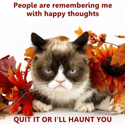 happy thoughts: People are remembering me  with happy thoughts  QUIT IT OR I'LL HAUNT YOU