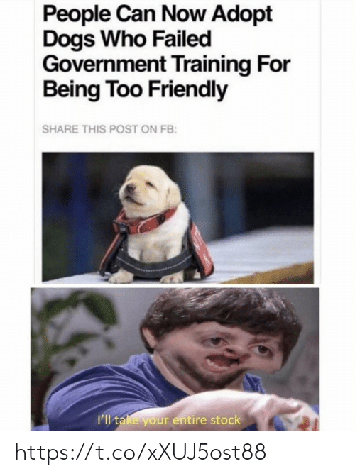 stock: People Can Now Adopt  Dogs Who Failed  Government Training For  Being Too Friendly  SHARE THIS POST ON FB:  I'll take your entire stock https://t.co/xXUJ5ost88