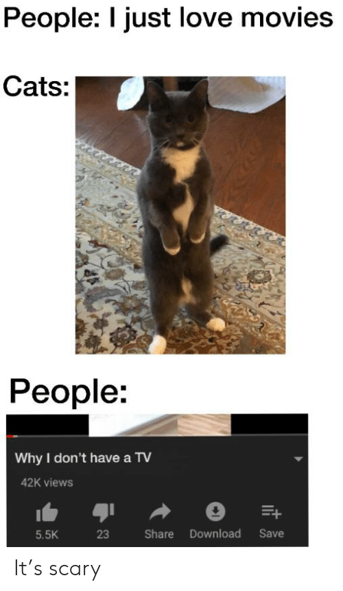 Cats, Love, and Movies: People: I just love movies  Cats:  People:  Why I don't have a TV  42K views  Save  Share Download  5.5K  23  it It's scary