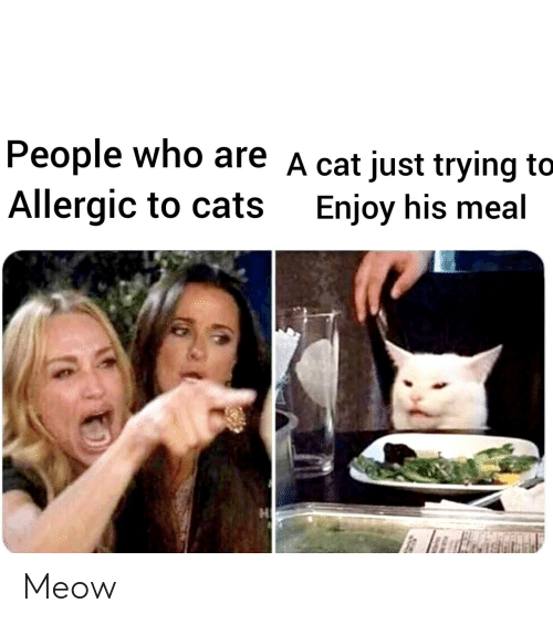 Cats, Cat, and Who: People who are A cat just trying to  Allergic to cats  Enjoy his meal Meow