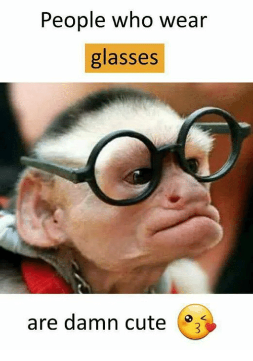 Cute, Memes, and Glasses: People who wear  glasses  are damn cute