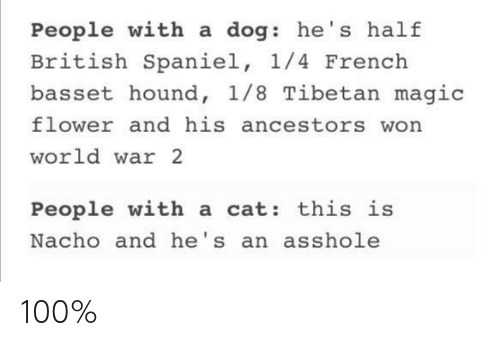 Anaconda, Flower, and Magic: People with a dog: he's half  British Spaniel, 1/4 French  basset hound, 1/8 Tibetan magic  flower and his ancestors won  world war 2  People with a cat: this is  Nacho and he's an asshole 100%