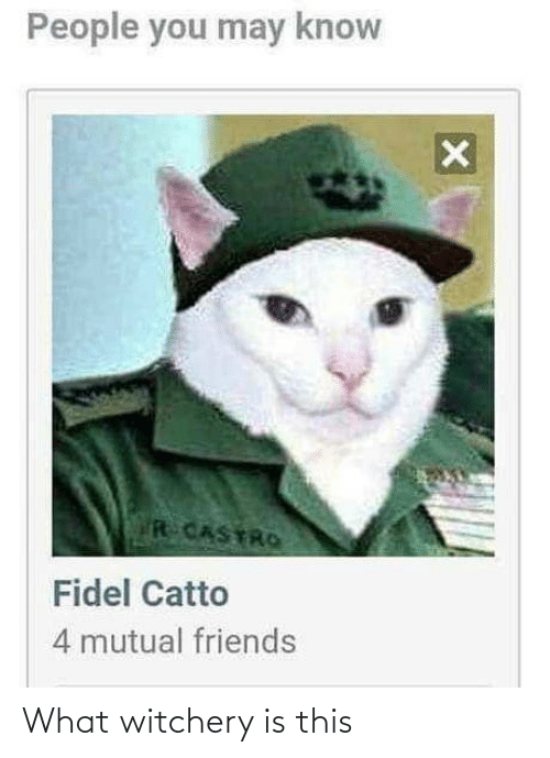 You May: People you may know  R CASTRO  Fidel Catto  4 mutual friends What witchery is this