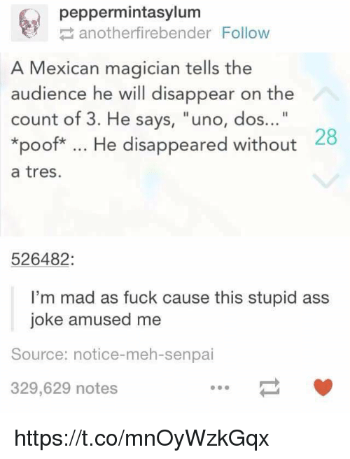 "Senpais: peppermintasylum  anotherfirebender Follow  A Mexican magician tells the  audience he will disappear on the  count of 3. He says, ""uno, dos...""  *poof*. He disappeared without  a tres.  28  526482:  I'm mad as fuck cause this stupid ass  joke amused me  Source: notice-meh-senpai  329,629 notes https://t.co/mnOyWzkGqx"
