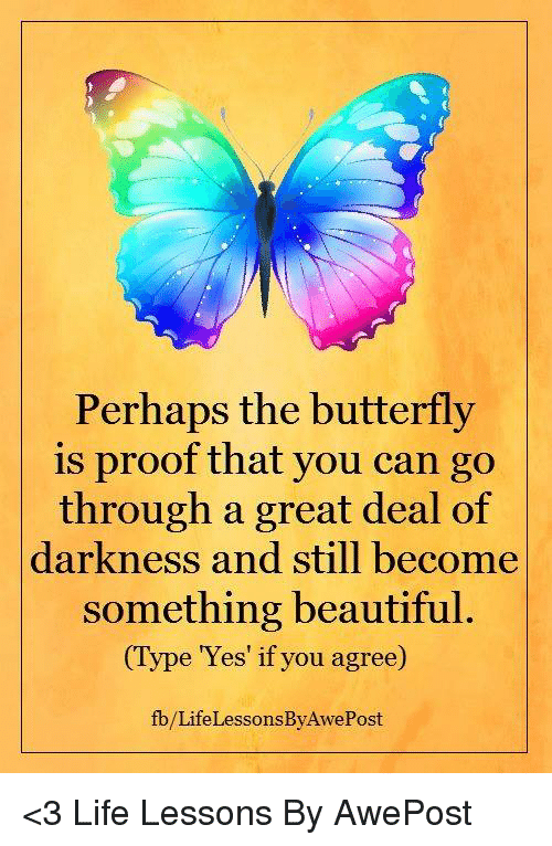 Perhapes: Perhaps the butterfly  is proof that you can go  through a great deal of  darkness and still become  something beautiful.  (Type 'Yes' if you agree)  fb/Life LessonsByAwePost <3 Life Lessons By AwePost
