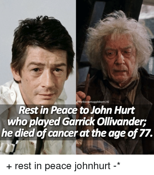 Memes, 🤖, and John Hurt: @Perksofamuggleborn/IG  Rest in Peace to John Hurt  who played Garrick Ollivander:  he died of cancer at the age of 77. + rest in peace johnhurt -*