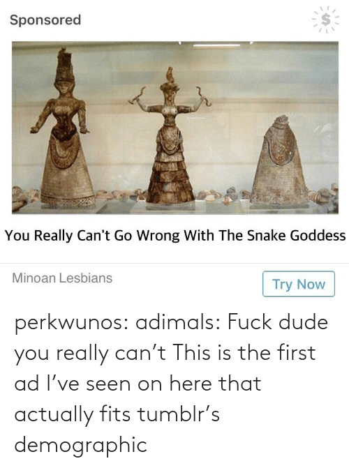 seen: perkwunos: adimals: Fuck dude you really can't  This is the first ad I've seen on here that actually fits tumblr's demographic