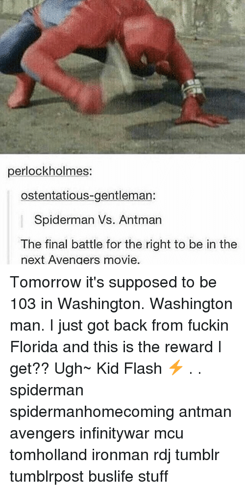 Memes, Tumblr, and Antman: perlockholmes:  ostentatious-gentleman:  Spiderman Vs. Antman  The final battle for the right to be in the  next Avengers movie. Tomorrow it's supposed to be 103 in Washington. Washington man. I just got back from fuckin Florida and this is the reward I get?? Ugh~ Kid Flash ⚡️ . . spiderman spidermanhomecoming antman avengers infinitywar mcu tomholland ironman rdj tumblr tumblrpost buslife stuff