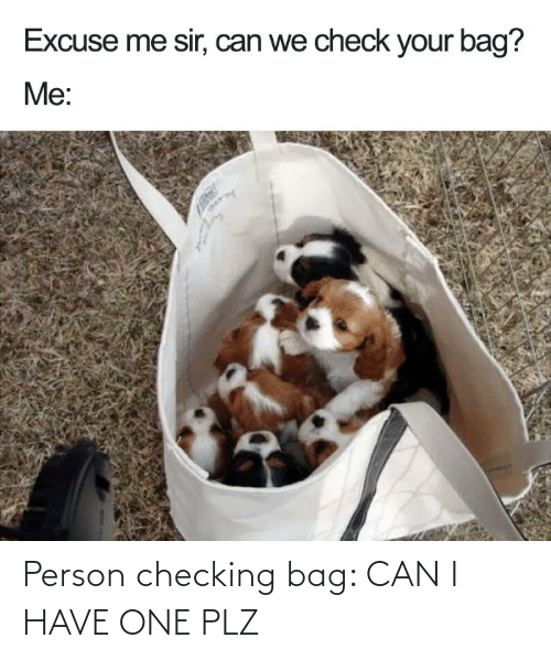 Checking: Person checking bag: CAN I HAVE ONE PLZ