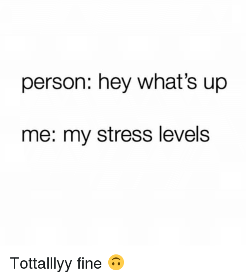 Girl Memes, Stress, and Person: person: hey what's up  me: my stress levels Tottalllyy fine 🙃
