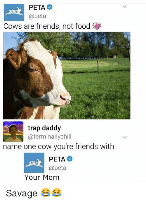 Food, Friends, and Funny: PETA  @peta  Cows are friends, not food  trap daddy  @terminallychill  name one cow you're friends with  PETA  @peta  Your Mom Savage 😂😂
