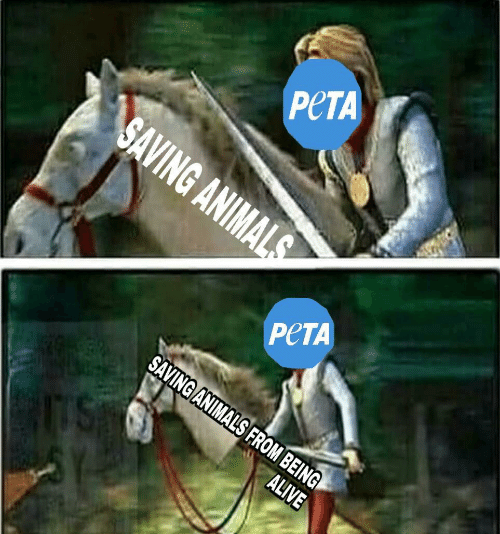 Peta, From, and Being: PeTA  PeTA  NIMALS FROM B  BEING