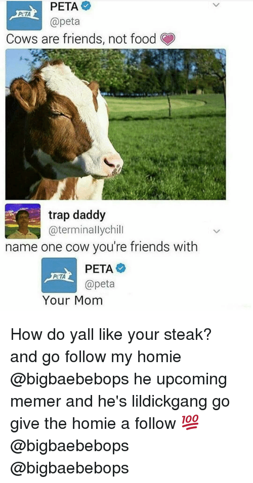 Food, Friends, and Homie: PETA  @peta  PeTA  Cows are friends, not food  trap daddy  @terminallychill  name one cow you're friends with  PCTA  apeta  Your Mom How do yall like your steak? and go follow my homie @bigbaebebops he upcoming memer and he's lildickgang go give the homie a follow 💯@bigbaebebops @bigbaebebops