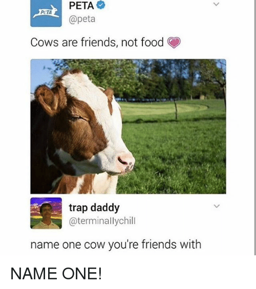 Food, Friends, and Funny: PETA  @peta  PUTA  Cows are friends, not food  trap daddy  @terminallychill  name one cow you're friends with NAME ONE!
