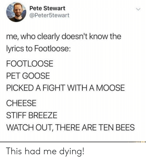 Watch Out, Lyrics, and Watch: Pete Stewart  @Peter5tewart  me, who clearly doesn't know the  lyrics to Footloose:  FOOTLOOSE  PET GOOSE  PICKED A FIGHT WITH A MOOSE  CHEESE  STIFF BREEZE  WATCH OUT, THERE ARE TEN BEES This had me dying!