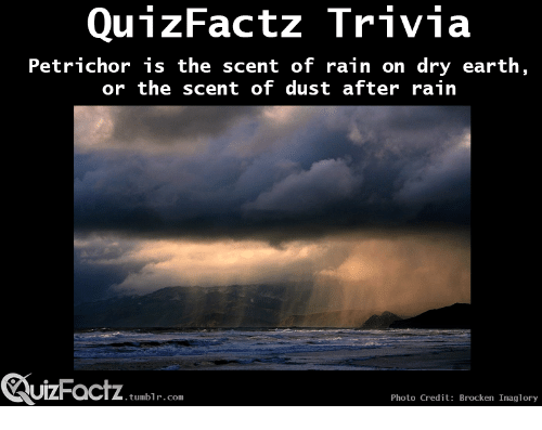 Tumblr, Earth, and Rain: Petrichor is the scent of rain on dry earth,  or the scent of dust after rain  UIZFacTZ tumblr com  Photo Credit: Brocken Inaglory