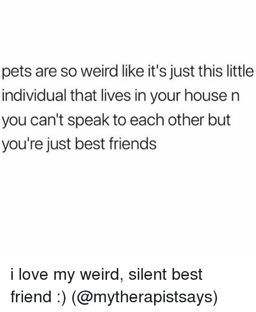Best Friend, Friends, and Love: pets are so weird like it's just this little  individual that lives in your house n  you can't speak to each other but  you're just best friends i love my weird, silent best friend :) (@mytherapistsays)