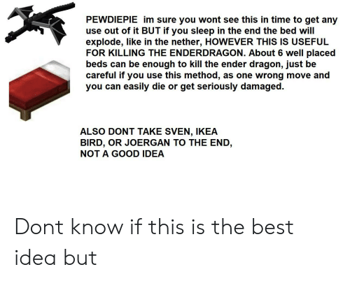 Ikea, Best, and Good: PEWDIEPIE im sure you wont see this in time to get any  use out of it BUT if you sleep in the end the bed will  explode, like in the nether, HOWEVER THIS IS USEFUL  FOR KILLING THE ENDERDRAGON. About 6 well placed  beds can be enough to kill the ender dragon, just be  careful if you use this method,  you can easily die or get seriously damaged.  as one wrong move and  ALSO DONT TAKE SVEN, IKEA  BIRD, OR JOERGAN TO THE END,  NOT A GOOD IDEA Dont know if this is the best idea but
