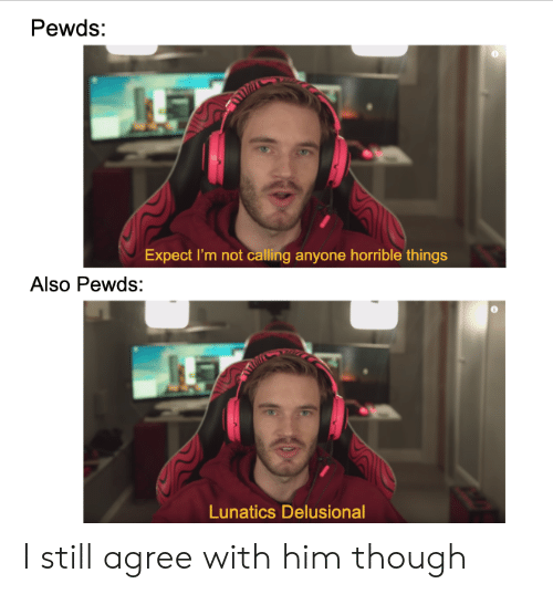 Him, Still, and Calling: Pewds:  Expect I'm not calling anyone horrible things  Also Pewds:  Lunatics Delusional I still agree with him though