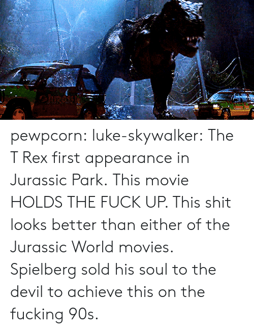 Luke Skywalker: pewpcorn: luke-skywalker: The T Rex first appearance in Jurassic Park.  This movie HOLDS THE FUCK UP. This shit looks better than either of the Jurassic World movies. Spielberg sold his soul to the devil to achieve this on the fucking 90s.