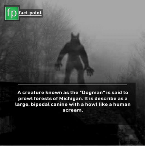 """bipedal: Pfact point  A creature known as the """"Dogman"""" is said to  prowl forests of Michigan. It is describe as a  large, bipedal canine with a howl like a human  scream."""