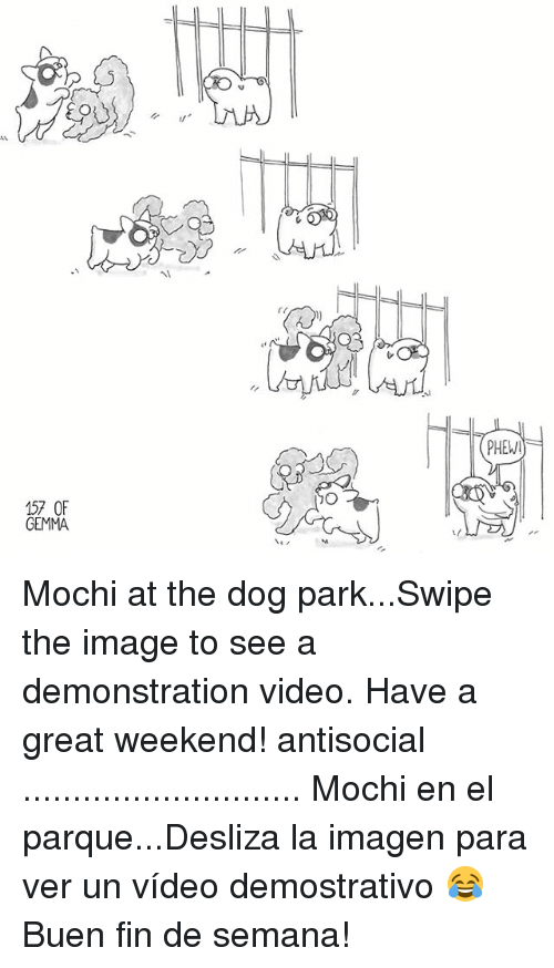 Great Weekend: PHEW  157 OF  GEMMA Mochi at the dog park...Swipe the image to see a demonstration video. Have a great weekend! antisocial ............................ Mochi en el parque...Desliza la imagen para ver un vídeo demostrativo 😂 Buen fin de semana!