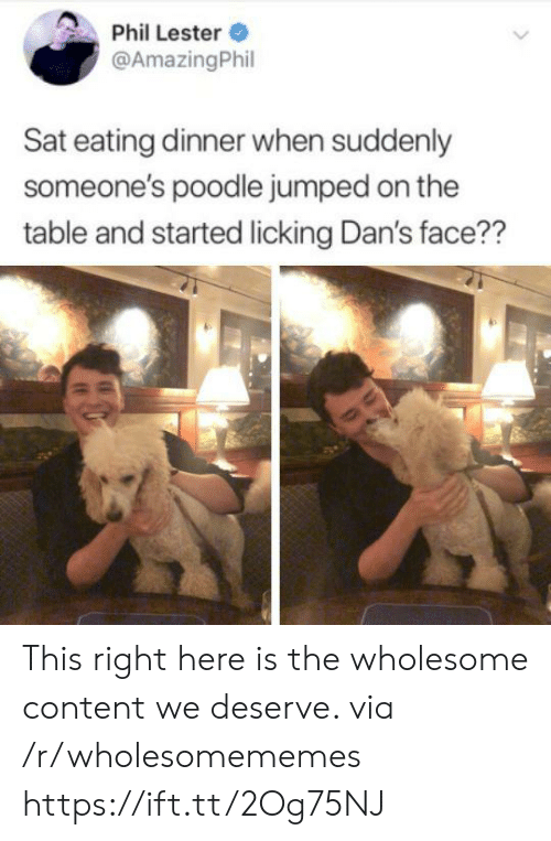 dans: Phil Lester  @AmazingPhil  Sat eating dinner when suddenly  someone's poodle jumped on the  table and started licking Dan's face?? This right here is the wholesome content we deserve. via /r/wholesomememes https://ift.tt/2Og75NJ