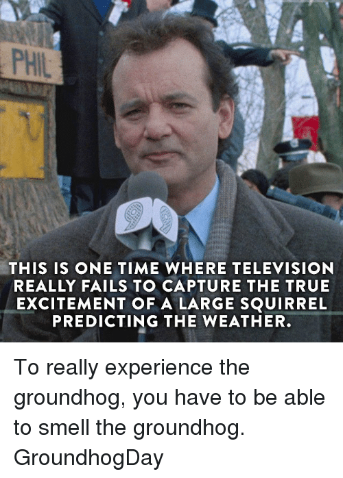 Memes, Television, and The Weather: PHIL  THIS IS ONE TIME WHERE TELEVISION  REALLY FAILS TO CAPTURE THE TRUE  EXCITEMENT OF A LARGE SQUIRREL  PREDICTING THE WEATHER To really experience the groundhog, you have to be able to smell the groundhog. GroundhogDay