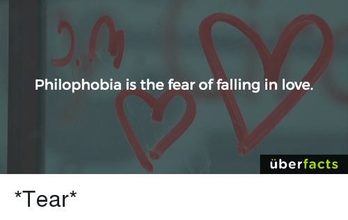 Facts, Love, and Memes: Philophobia is the fear of falling in love.  uber  facts *Tear*