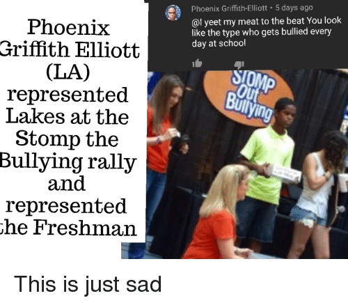 Facepalm, School, and Phoenix: Phoenix Griffith-Elliott 5 days ago  @l yeet my meat to the beat You loofk  like the type who gets bullied every  day at school  Phoenix  Griffith Elliott  (LA)  represented  Lakes at the  Stomp the  Bullying rally  and  represented  he Freshman  in