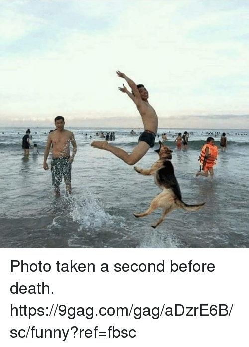 9gag, Dank, and Funny: Photo taken a second before death.  https://9gag.com/gag/aDzrE6B/sc/funny?ref=fbsc