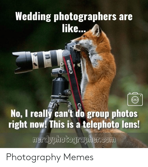 Photography: Photography Memes