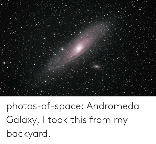 Tumblr, Blog, and Space: photos-of-space:  Andromeda Galaxy, I took this from my backyard.