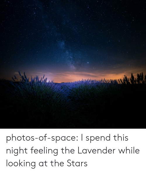 Tumblr, Blog, and Space: photos-of-space:  I spend this night feeling the Lavender while looking at the Stars