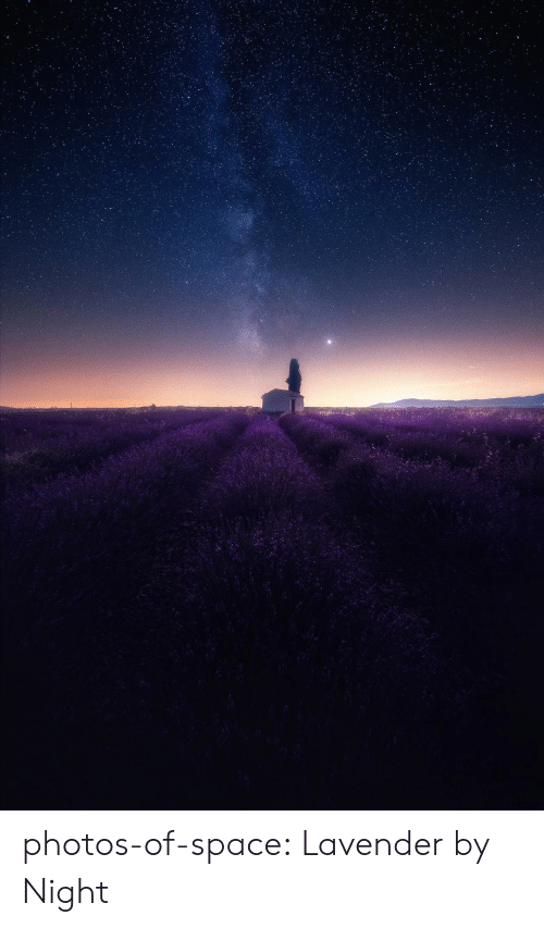 Tumblr, Blog, and Space: photos-of-space:  Lavender by Night