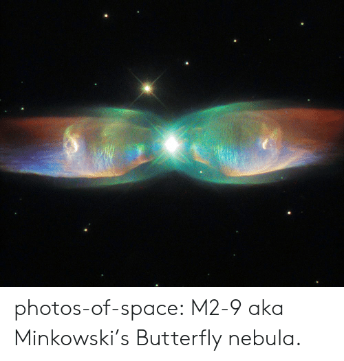 Butterfly: photos-of-space:  M2-9 aka Minkowski's Butterfly nebula.